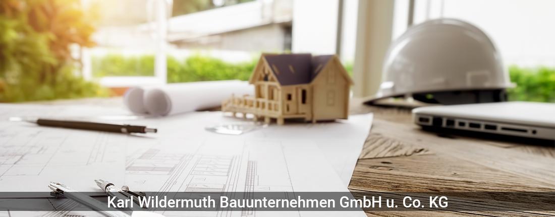 Bauunternehmen in Tamm - SM Bau GmbH & Co. KG: Hochbau, Erdarbeiten